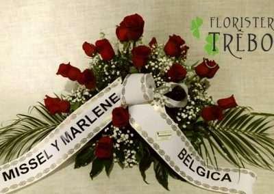 rosas rojas en floristeria trebole en pola de laviana en la cuenca del nalon en asturias
