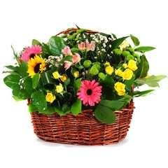 Cestas de flores para regalar, en floristeria trebole en pola de laviana en la cuenca del nalon en asturias