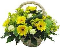cesta de flores para regalar en floristeria trebole en pola de laviana en la cuenca del nalon en asturias