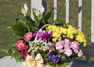 cestas de flores y plantas en floristeria trebole en pola de laviana en al cuenca del nalon en asturias.