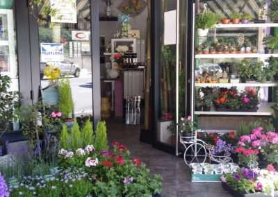 floristeria trebole en pola de laviana en la cuenca del nalon en asturias,enviar coronas al tanatorio ,ramos de novia