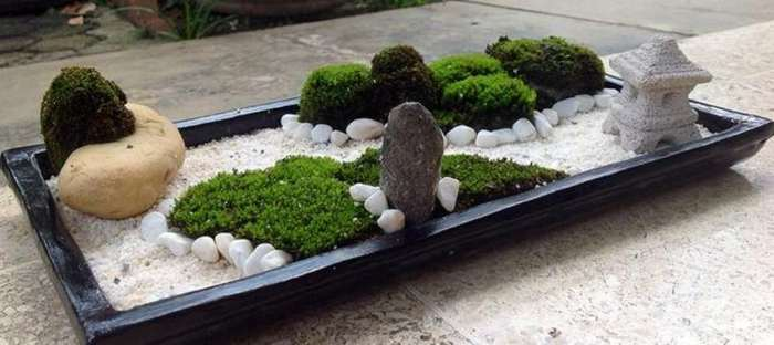 Jardín zen en floristeria trebole