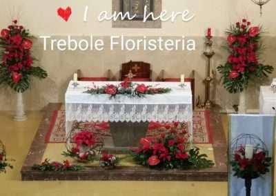 Floristerias en pola de laviana