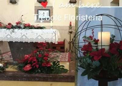Floristeria trebooe
